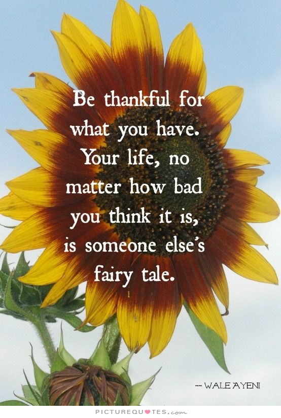 Be Thankful...stampandembellish